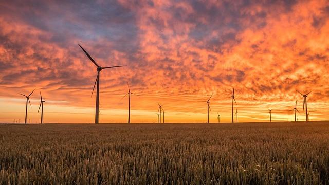 Estudio de Impacto Ambiental Sfera proyecto ambiental 134